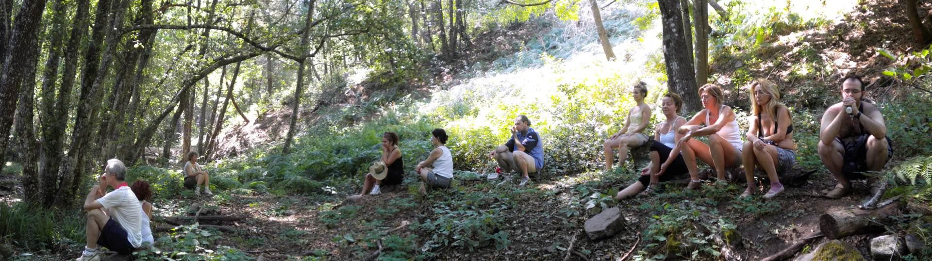 Meditacion en el bosque - vacaciones y crecimiento personal con Katia Rashmi